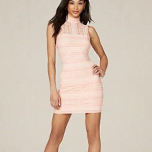 Bebe lace dress